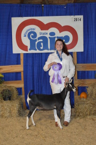 Junior Doe Reserve Best In Show